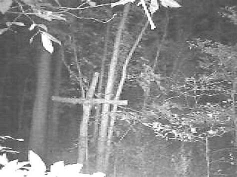 weird trail cam video possible bigfoot or something - YouTube